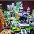 Freshwater aquarium services