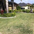 Andamos / Basic touch lawn care service