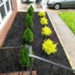 Laquinton Clayborne- Mastermind Landscaping