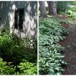 Photo #6: SUMMER YARD CLEAN UP! WEED removal specials mulch deals YARD CLEAN UP