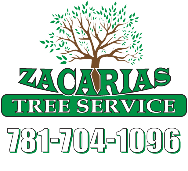 Logo Zacarias Tree & Landscaping Services